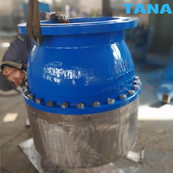ductile iron foot valve